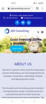 Business and Investment Consulting Firm