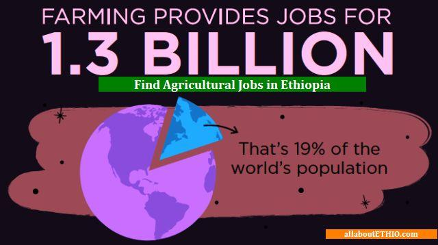 agricultural jobs in ethiopia farming opportunities