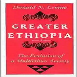 greater ethiopia, the evolution of a multiethnic society by donald levine