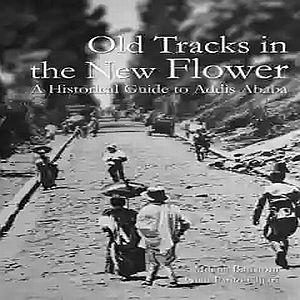 old tracks in the new flower by milena batistoni and glen paolo chiari