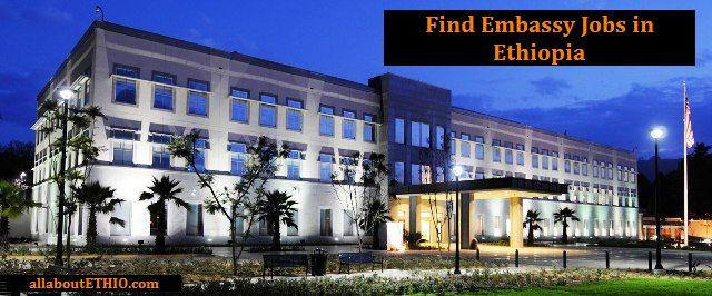 embassy jobs in ethiopia embassy staff