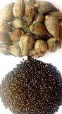 ethiopian black cardamon whole and seeds
