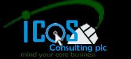 ethiopian business consultants icos consulting plc