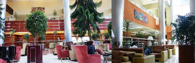 intercontinental hotel lobby in ethiopia