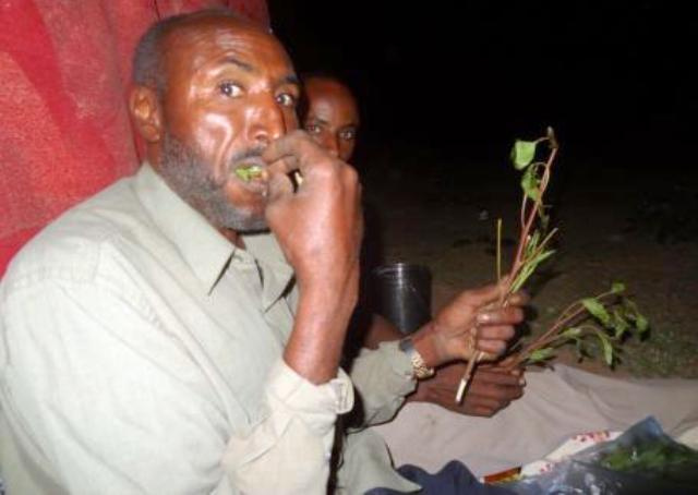 khat gat chewing house