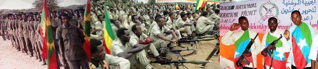 oromo liberation front ogaden national liberation front ginbot7