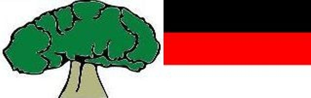 oromo tree and colors flag
