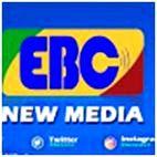 top ethiopia youtube channels ebc
