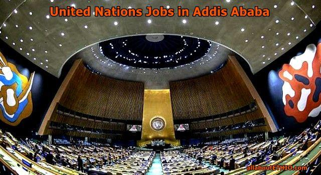 un jobs in addis ababa